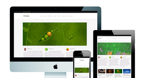 theme-responsive-wordpress-orion