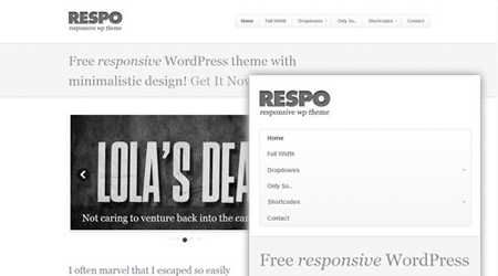 theme-responsive-wordpress-respo