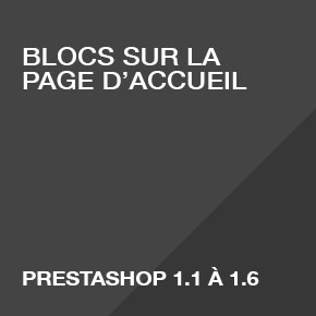 blocs-page-accueil